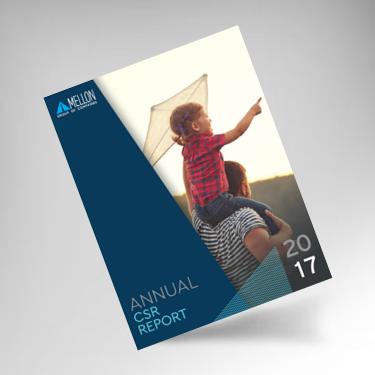2017 Annual CSR Report